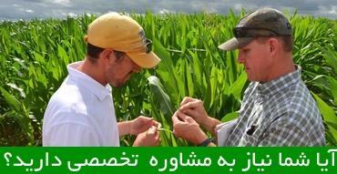 مشاوره خرید آنلاین محصولات کشاورزی